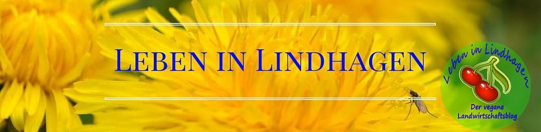 Leben in Lindhagen